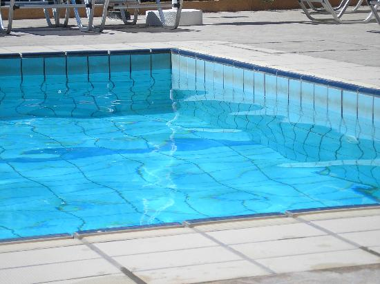 Damon Hotel Apartments : dirt line around the edge of pool