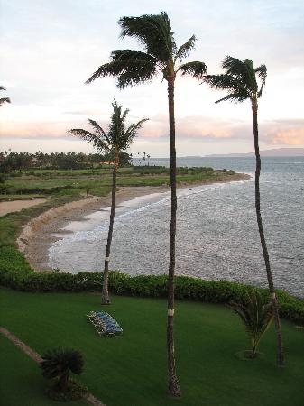 Menehune Shores: beach area