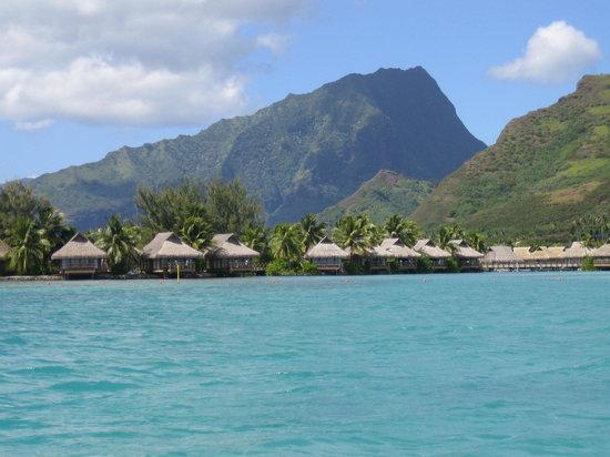 Tahiti, Polinesia Francesa: Moorea