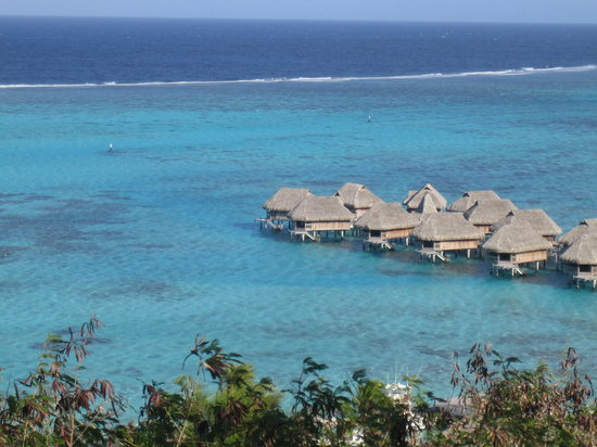 Tahiti, Fransk Polynesia: Moorea Hotel Sofitel