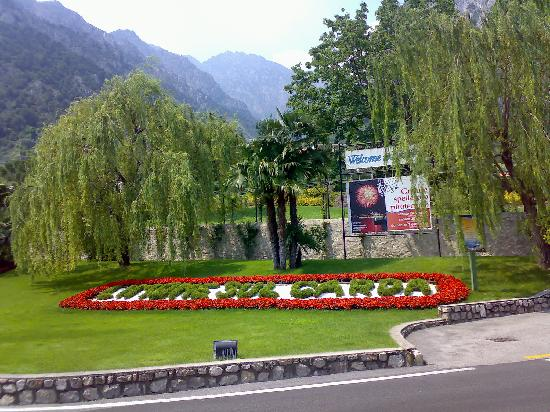 Hotel Caravel: Limone flowers-a useful meeting point for coach trips
