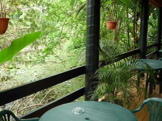 Colo I Suva Rainforest Eco Resort: view from balcony