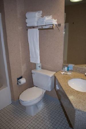 Hampton Inn Missoula: Another Bathroom Shot
