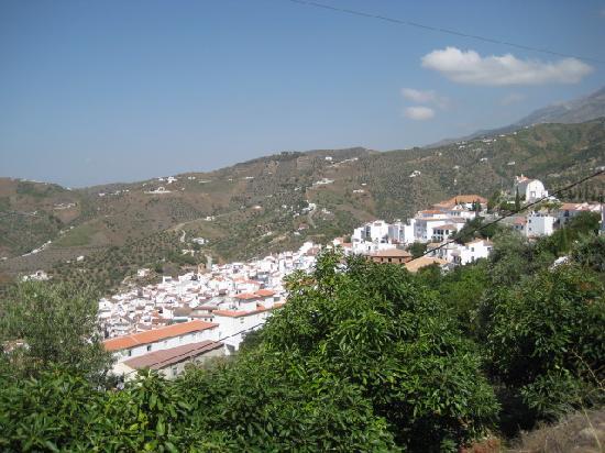 Posada la Plaza: Village View