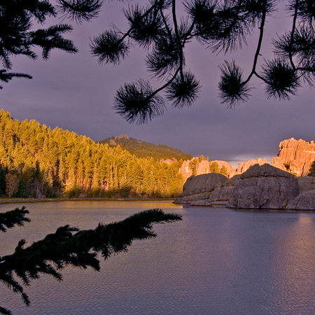Custer State Park in South Dakota
