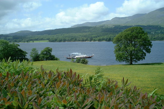 Things To Do in Lake Grasmere, Restaurants in Lake Grasmere