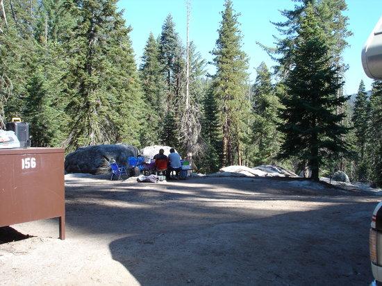 Dorst Campground: Campsite 156