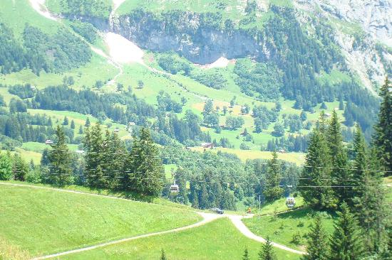 Grindelwald, Switzerland: The view from the deck at Bort(on the way down from Bachalpsee)