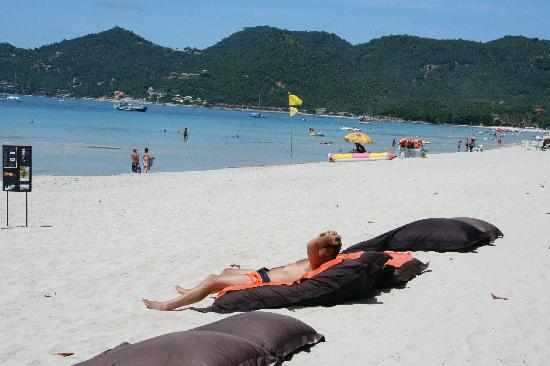 The Library: big pillow on the beach