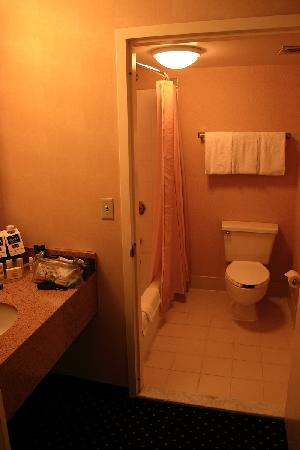 Courtyard Camarillo : Despite a large sitting room and big bedroom, the bathroom is standard.