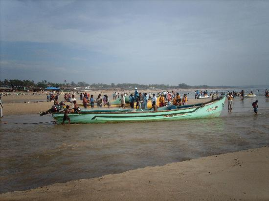 Baga, India: The local fishing boats return