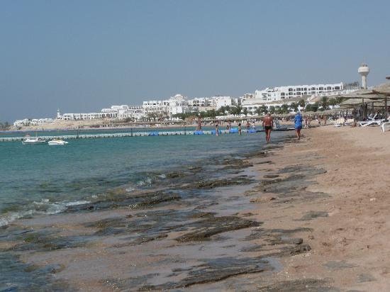Baron Resort Sharm El Sheikh: spiagga