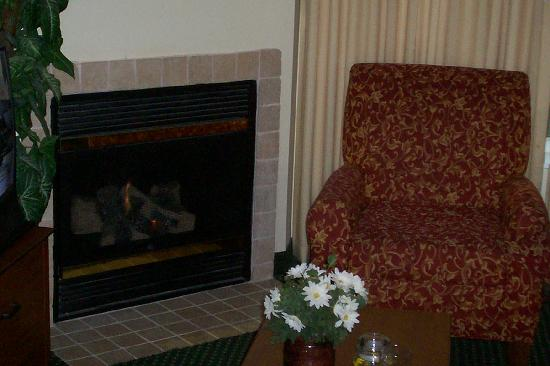 Residence Inn Buffalo Galleria Mall: living room with fireplace