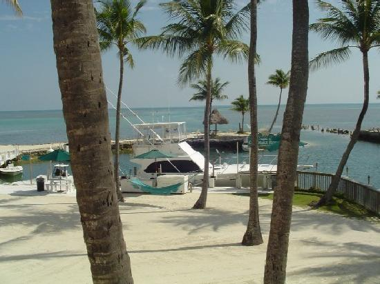 Chesapeake Beach Resort: This is where the boats are!