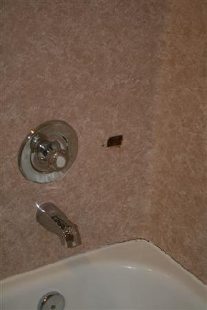 Americas Best Value Inn - Lynnwood / Seattle: Shower - notice the rusty shower holder