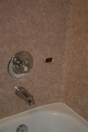 كينج سويتس لينوود: Shower - notice the rusty shower holder