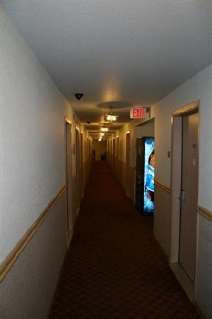 Americas Best Value Inn - Lynnwood / Seattle: Light fixtures in hallway all hanging by the electrical wires