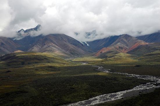 Happy Campers - Picture of Alaska, United States - TripAdvisor