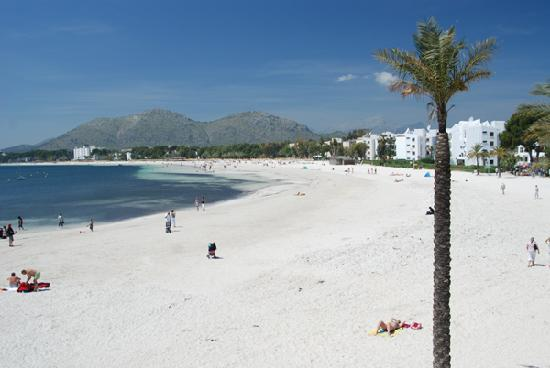 The Beautiful Beach At Puerto Alcudia Bild Von Port D