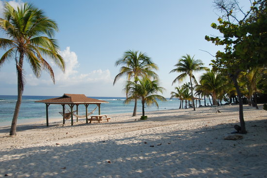 Cayman Brac Beach Resort: Hammocks and waterfront