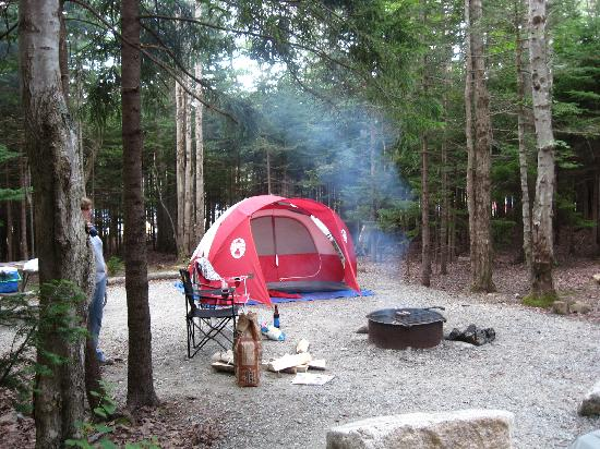 blackwoods campground updated 2017 prices reviews