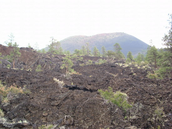 Sunset Crater Volcano National Monument: Lava Field