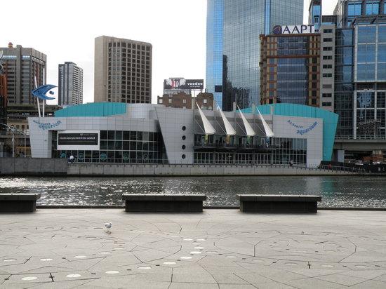 Melbourne's Aquarium