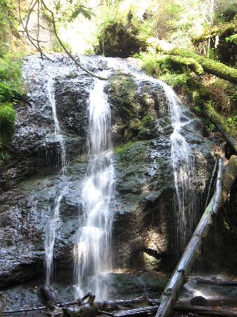 Landmark Orcas Island: Don't miss the waterfall on the island - easy walks