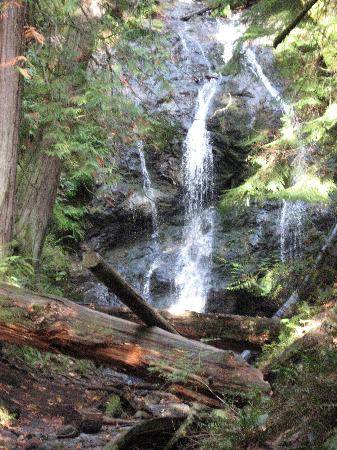 Landmark Orcas Island: more pix of waterfall, easy walk from car park