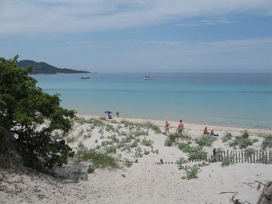 La Roya : Salecia Beach