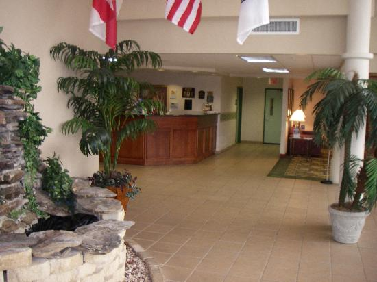Allure Suites: Lobby of hotel