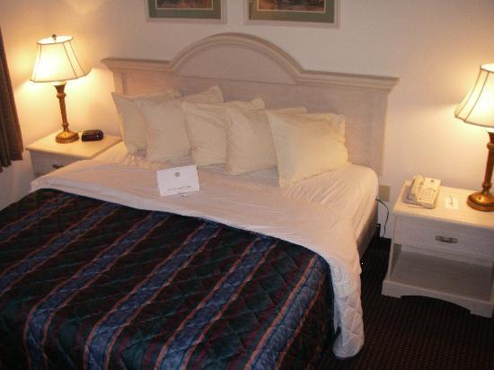 傾城套房飯店照片