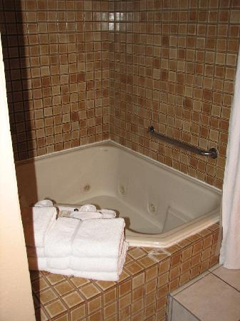 Mt. Charleston Lodge: A spacious tub