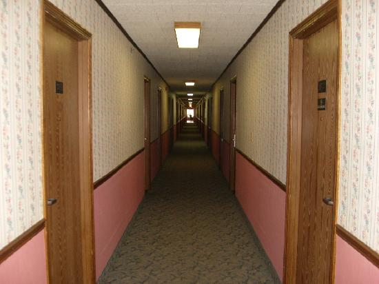 Quality Inn: Hall Way in Hotel