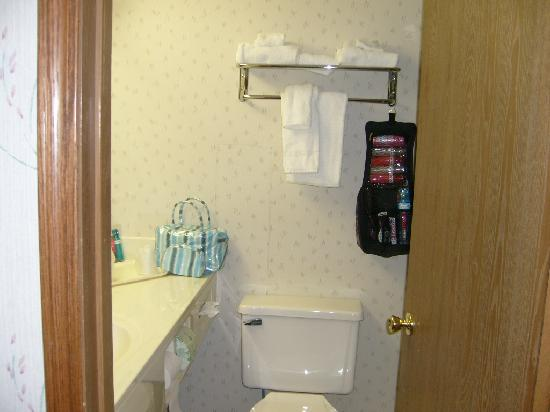 Quality Inn: Room 240 Bathroom