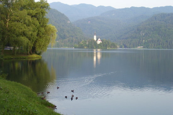 Słowenia: Lake Bled, Slovenia. Early in the morning