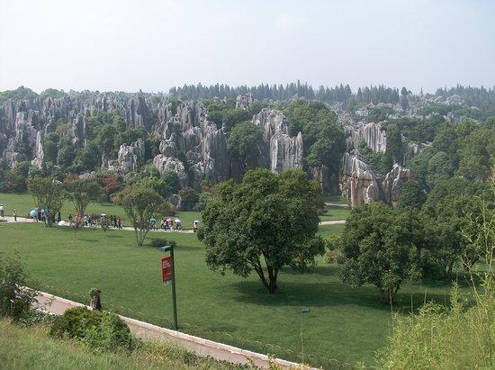 كونمينج, الصين: Steinwald bei Shilin - Kunming