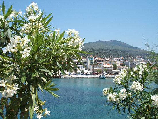 "Alexandra Beach Thassos Spa Resort: Pretty ""Skala Marion"""