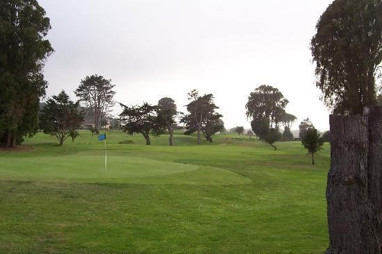 Sea Pines Golf Resort: thr golf course