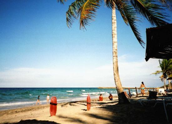 Laguna Mar: The Lifeguards Spot