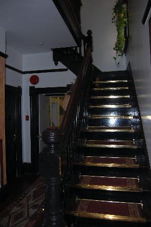 Urban Hideaway Guesthouse: Lobby