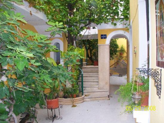 62 St. Guest House: Garden area