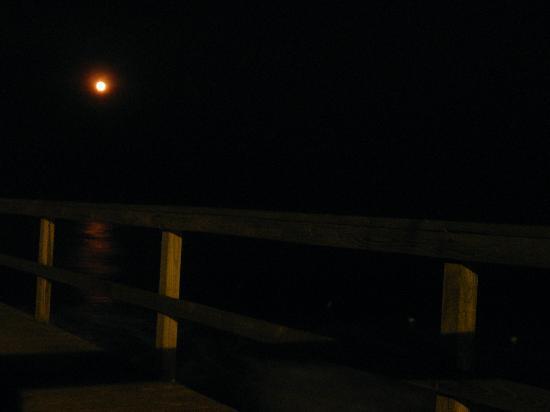 red moon nj - photo #9