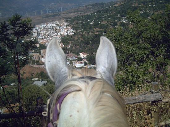 La Casa del Viento: view of Lanjaron from a horse at Casa el Viento