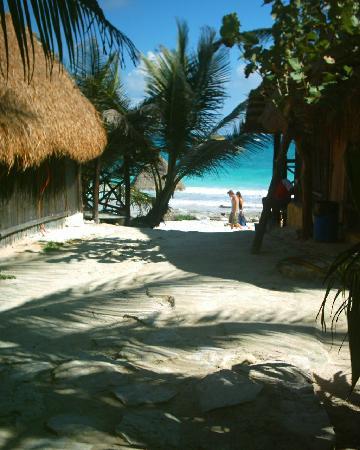 Cabanas Playa Condesa: Paradise