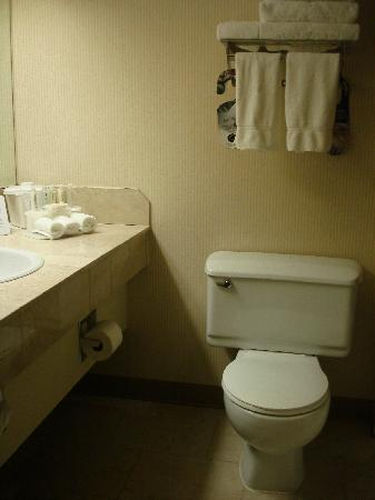 Atrium Inn Vancouver: clean bathroom