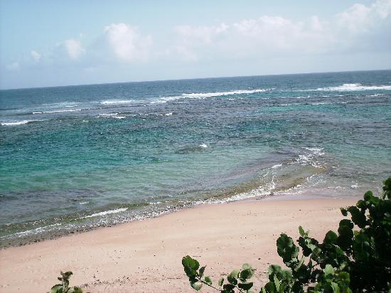 Villa Tropical Oceanfront Apartments on Shacks Beach: Blue Hole from Vila Tropical