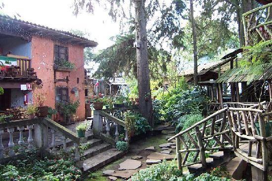 Cabanas Colina De Los Ruisenores: interior