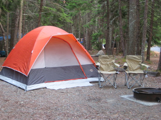 Blackwoods Campground: an average tent site