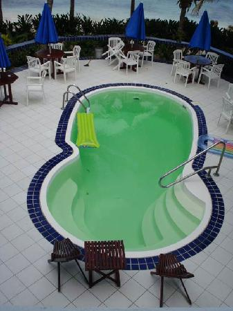 Blue Tang Inn: Green pool